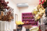 Climatizzazione negozio fiorista a Lodi Bergamo