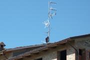 Impianto antenne TV e Sat centralizzato per villette a schiera a Bergamo